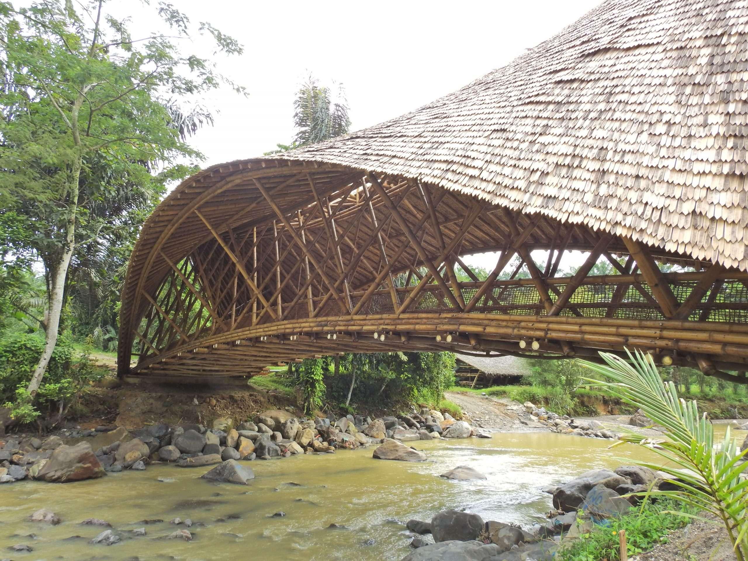 Orangutan Haven Bridge